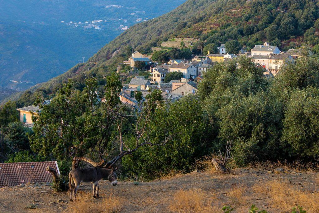 Vue sur le hameau de Vignale de la place du clocher